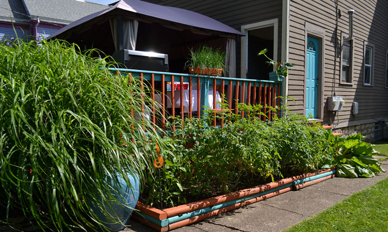 vegetable garden along back deck on Garden Walk Buffalo
