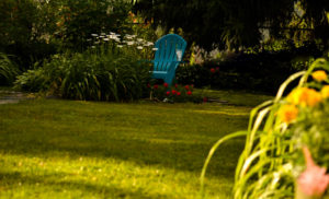 chair in shade