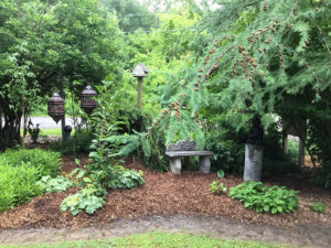 peaceful garden in Albion, NY