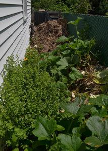 compost area for gardener in Hamburg NY