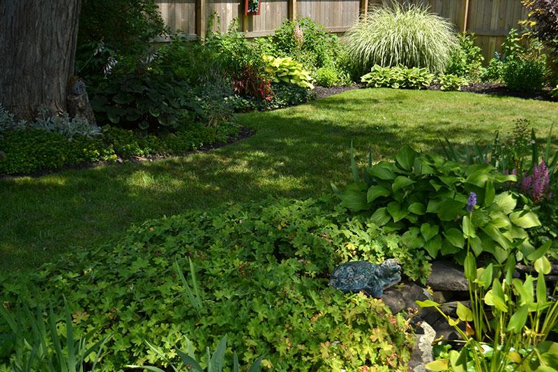 garden beds near pond in Hamburg NY
