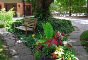 garden paths on West Ferry in Buffalo NY