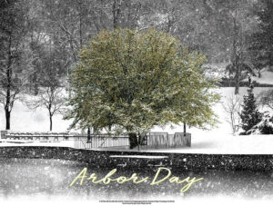 Arbor Day poster 2018 from NYS DEC