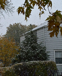 snow and Autumn leaves in Amherst NY