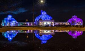 Lumagination at Buffalo and Erie County Botanical Gardens