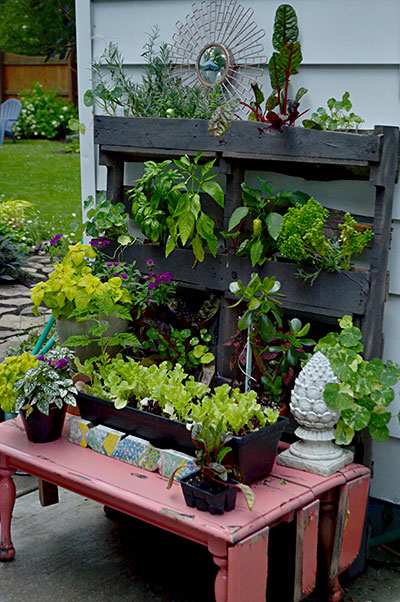 vertical planter made of pallet