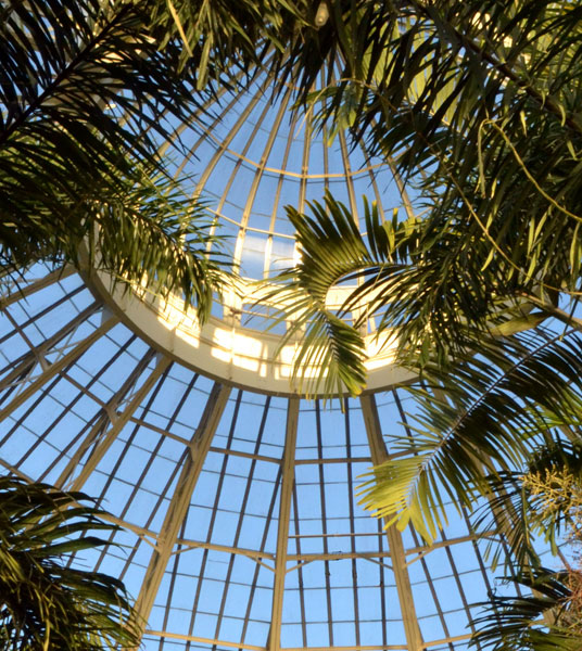 dome at Buffalo and Erie County Botanical Gardens