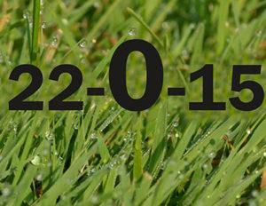 grass with numbers representing zero phosphorus in fertilizer