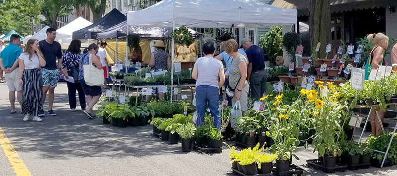 vendors at Lewiston GardenFest