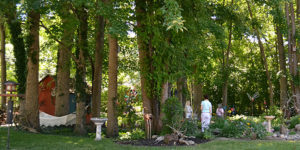 looking into 'secret garden' in Amherst NY