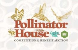 image for 2019 Pollinator House competition