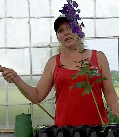 Jen Weber staking a flower
