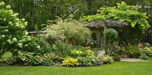 garden beds and arbor