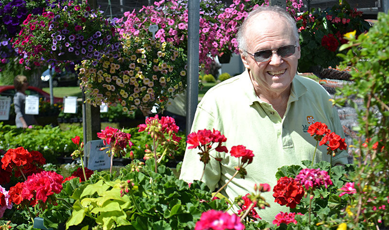 David Mischler at Mischler's Florist and Greenhouses in Williamsville