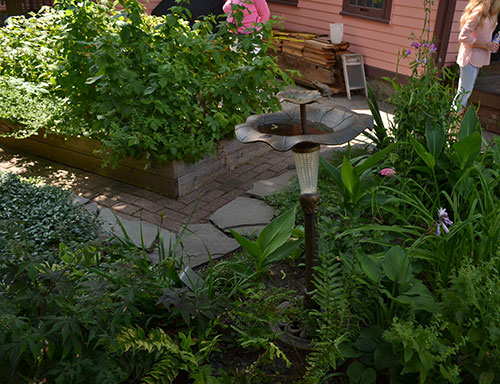 raised bed for vegetables