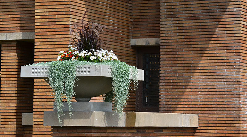 urn with plants at Frank Lloyd Wright's Martin House
