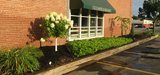 garden at Clearfield Library Amherst