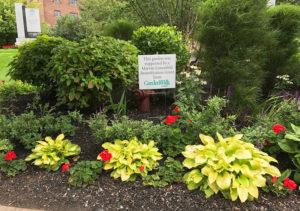 Naval Park gardens in Buffalo