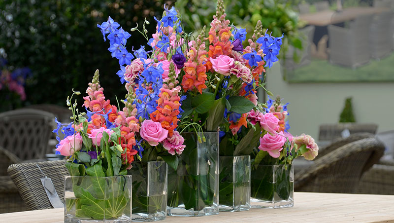 cut flowers in different color combinations