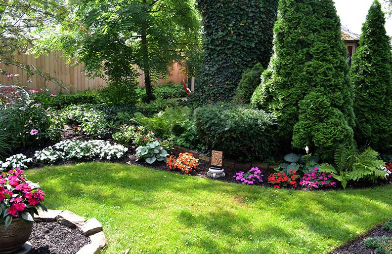 garden bed with shrubs in South Buffalo