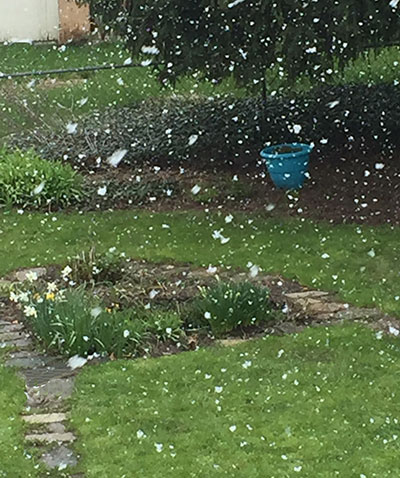snow in May 2020