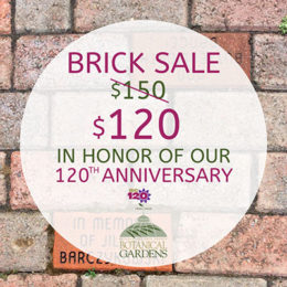 brick sale at Botanical Gardens