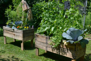 raised vegetable bed by Stofko