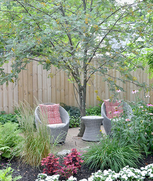 seating area under tree in driveway