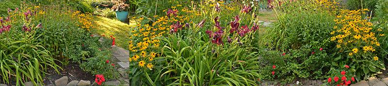 series of photos of garden