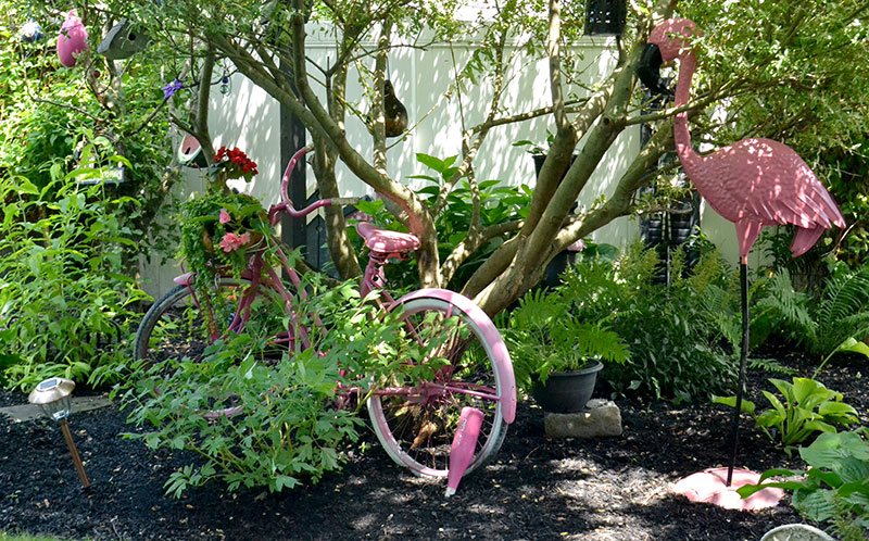 pink bicycle in garden