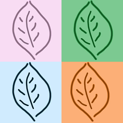 graphic of four leaves in four seasons