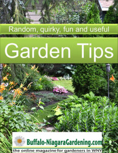 title page of ebook on Garden Tips