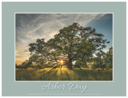 Arbor Day poster for 2020