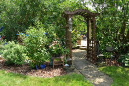 arbor at entrance to backyard