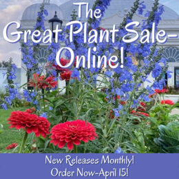 image for Great Plant Sale