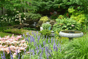 waterfall view from island planting