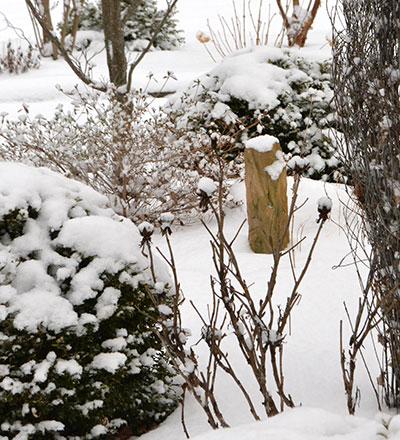 rock in winter garden