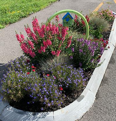garden along bike path