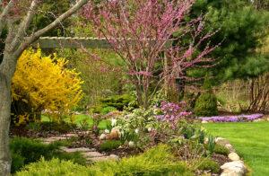 colorful spring garden