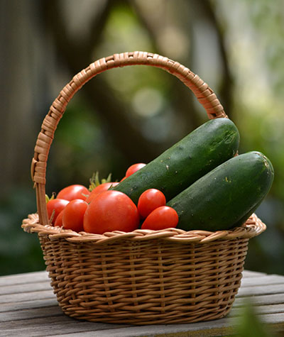 basket of tomatoes and cucumber by Stofko