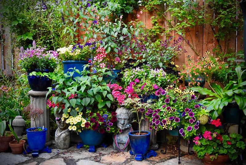 Open Garden in Western New York