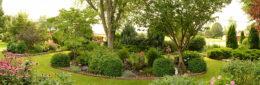 formal gardens in Western New York in summer