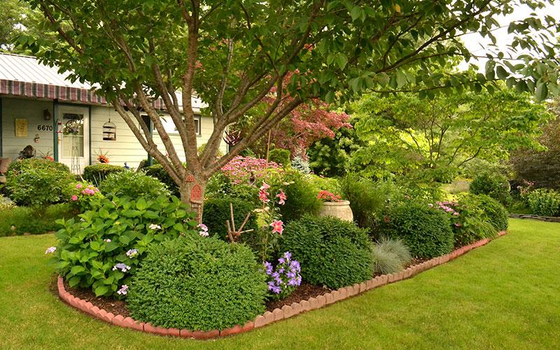formal garden bed in summer
