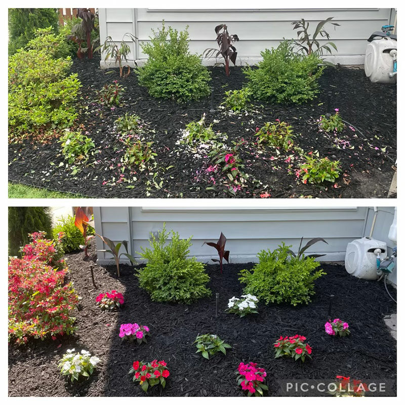 garden before and after hail in Amherst NY