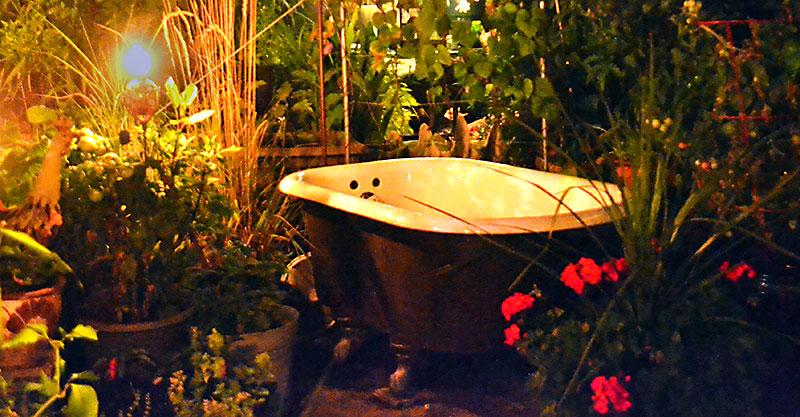 child's bathtub as flower shower in City of Tonawanda