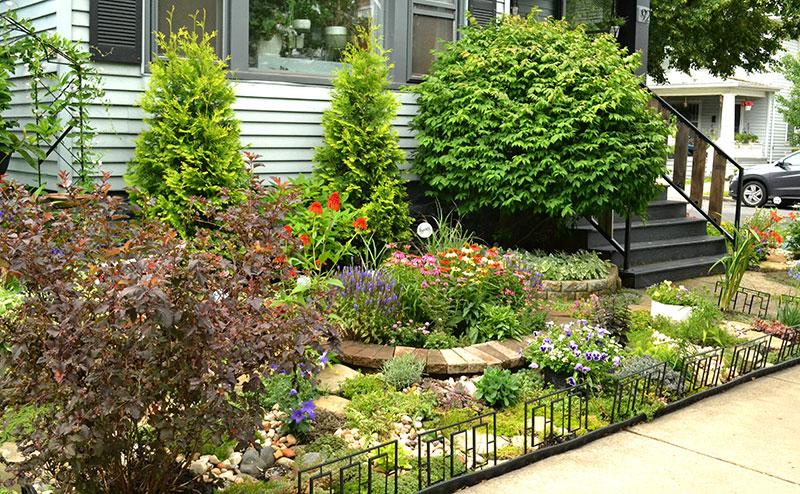 front garden in Kenmore New York